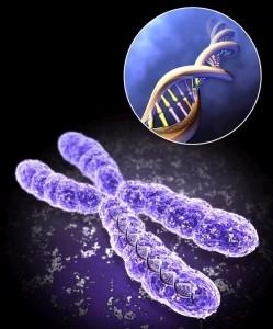 Nuevo avance científico: 23 nuevos genes relacionados con el Vitíligo